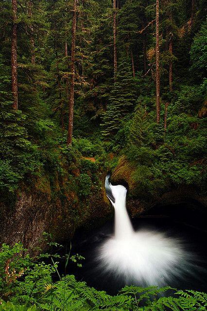 Punch Bowl Falls, Columbia River Gorge National Scenic Area, Bonneville, Eagle Creek Park, Oregon