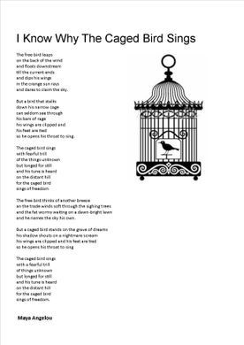 I know why the cage bird sings | Poetry. / Quotes ...