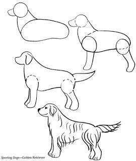 Dogs Drawing Golden Retriever 51 Ideas Animal Drawings Dog Drawing Cartoon Drawings