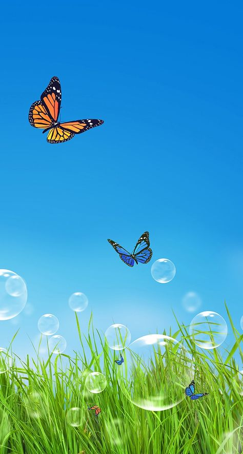 Bubbles and butterflies