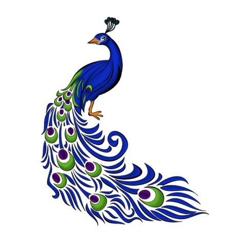 Peacock Right PNG and PSD