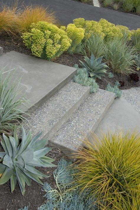 Step details   #entryway Best yard ever Garden, Landscape