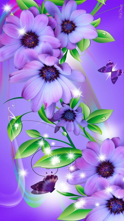 Cute Butterfly HD Wallpaper For iPhone - Best Wallpaper HD