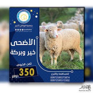 تصميم سوشل ميديا تبرع بحصص الأضاحي في عيد الاضحي اضحية العبد Social Media Animals Stuff To Buy