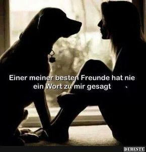 One of my best friends has never ...   - Lustige Tiere Hund - #Friends #Hund #Lustige #Tiere