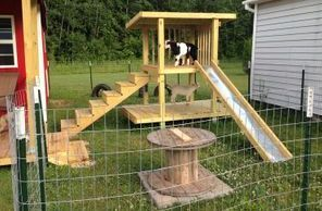 Available All About Goats Goat Playground Goat Barn Goat House