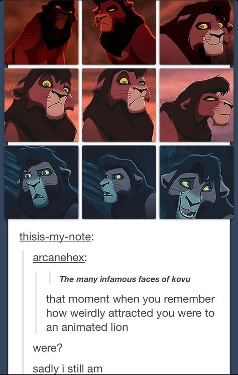 Oh, Kovu. Actually, I was attracted to Simba ever since I was a really little girl. And now I've got a thing for Kovu. Dang Disney and their amazing animations. Walt Disney, Disney Love, Disney Magic, Disney Stuff, Disney And Dreamworks, Disney Pixar, Kubo And The Two Strings, Nerd, Le Roi Lion