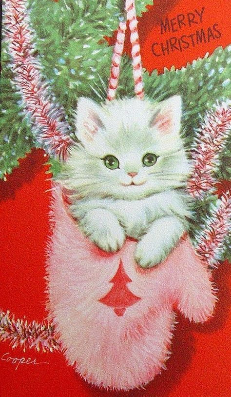 Kitten Christmas Cards.Vintage Kitten Christmas Card More Christmas Holiday