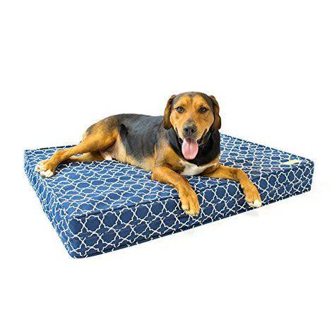 5 Best Dog Beds Orthopedic Dog Bed Memory Foam Dog Bed Cool