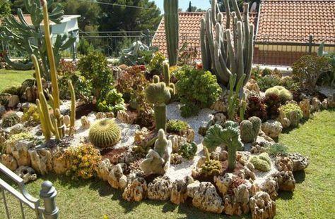 Creer Son Jardin Avec Des Plantes Grasses Page 2 Sur 2 Avec