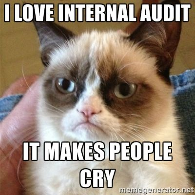 I love internal audit it makes people cry Grumpu2026 Funny - audit quotation