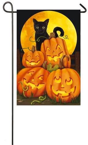 Evergreen Flag Garden Black Cat Moon Polyester 1 6 X 1 Ft Garden Flag This Black Cat Moon Polyester 1 6 X 1 Ft Garden Flag Is Perfect Evergreen Flags Outdoor Flags Fall Halloween