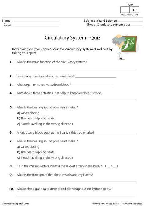 Primaryleap Co Uk Circulatory System Quiz Worksheet