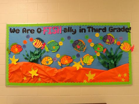 Definitely doing this for the start of the year except it'll be second grade. Back to school bulletin board - We Are O-Fish-Ally in Third Grade