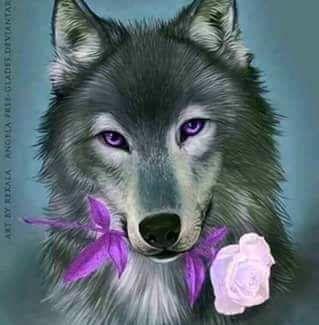 Loup Dessin En 2020 Loup Dessin Loup Peintre
