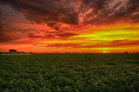 Exceptional I Am Sure No Olive Garden Will Be Build Here In The Near Future........  Chubbuck Sunset A Few Years Back. ©Photography By Stefano Carini |  Pinterest | Olive ...