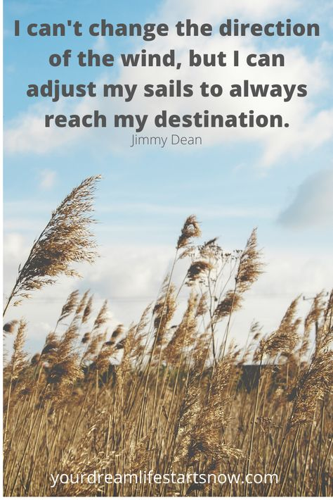 I can't change the direction of the wind, but I can adjust my sails to always reach my destination. #quotesinspirationalmotivational#inspirationalquotesmotivation#hopequotes#wellnessquotes#quotes#quotesmotivation#inspirationalmotivation#motivationpositivity
