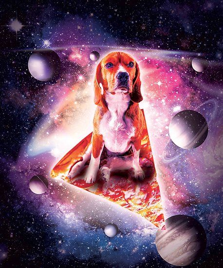Outer Space Galaxy Dog Riding Pizza Poster By Skylerjhill In 2021 Cute Cartoon Wallpapers Cat Artwork Cartoon Wallpaper