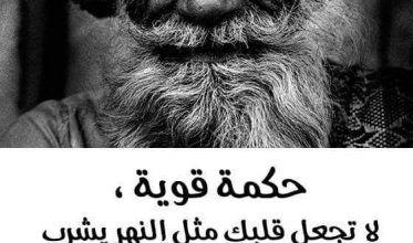 امثال وحكم عن الحب للفيس بوك صور صور عليها امثال وحكم أكتب اسمك على الصور Animal Tattoo Animals