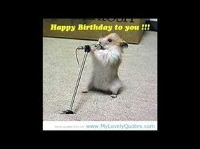 Las Mañanitas Con Mariachi Youtube Birthday Songs Happy Birthday Greetings Funny