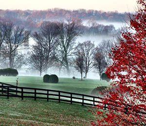 Morning fog over Middleburg in autumn | Salamander Resort & Spa | Middleburg, Va.
