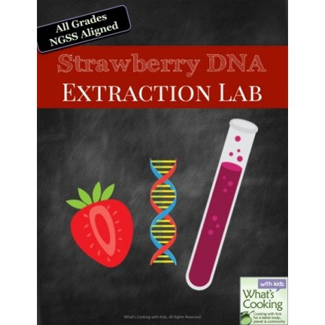 Strawberry DNA Extraction Lab Homeschool Activities for