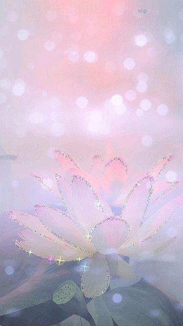 En este hermoso día voy hablarte sobre las comparaciones y el plan de Dios en nuestras vidas. Creo firmemente que cada ser humano debe de valorarse y quererse tal cual es, sin compararse con los demás, cada uno es único en su naturaleza o en su género, ni siquiera los gemelos tienen el mismo temperamento ni las mismas huellas, así como tampoco nuestros dedos de la mano o de los pies tienen el mismo tamaño. Cuando una persona se compara con otra persona, reniega su...