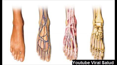 sintomas de mala circulacion sanguinea en los pies