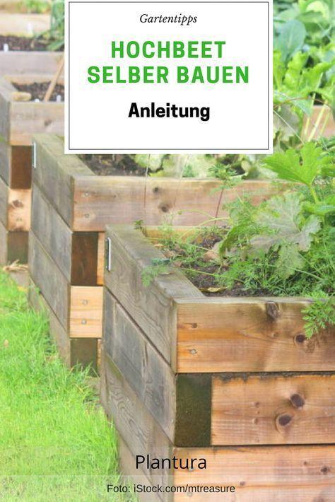 Hochbeet Bauen Anleitung Und Video Hochbeet Garten Gartentipps