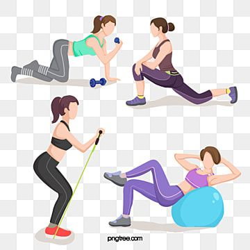 Indoor Slimming Fitness Exercise Exercise Clipart Yoga Barbell Png Transparent Clipart Image And Psd File For Free Download Physical Fitness Exercise Gymnastics Stretches