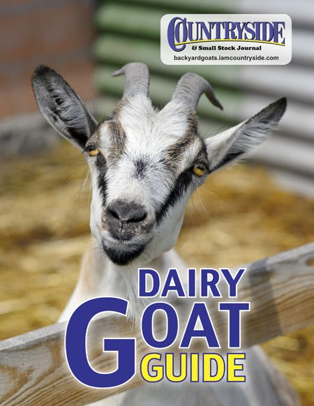 Get A Free Handbook On Goat Farming Including How To Choose Buy Feed Milk And Care For Them Plus The Benefits Of Goat Milk Dairy Goats Goats Goat Farming