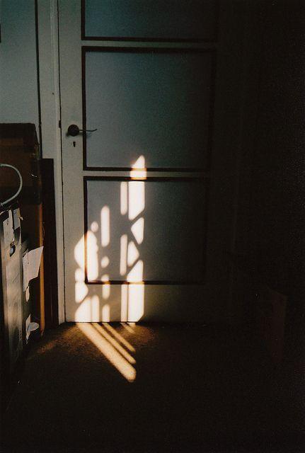 Dappled에 있는 Lcx님의 핀 자연광 사진 빛과 그림자 사진