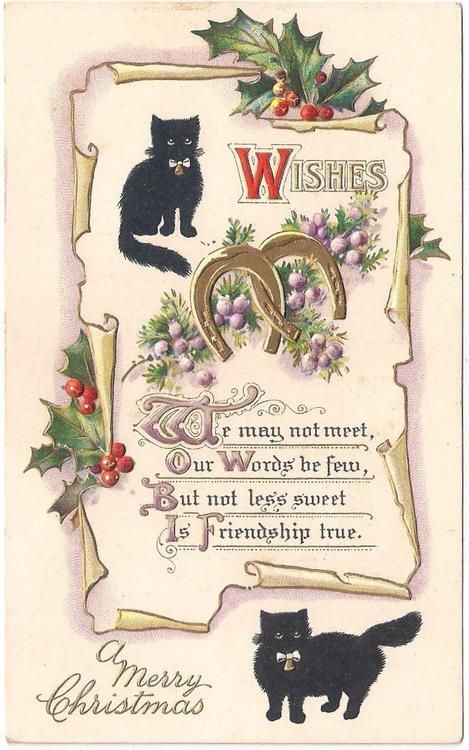 Cat Christmas Sayings : christmas, sayings, Black, Christmas, Ideas, Cats,, Vintage, Cards,