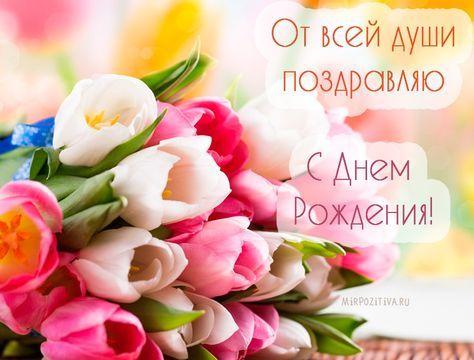 Cvety Tyulpany Ot Vsej Dushi Pozdravlyayu S Dnem Rozhdeniya S Dnem Rozhdeniya Otkrytki Pozdravitelnye Otkrytki
