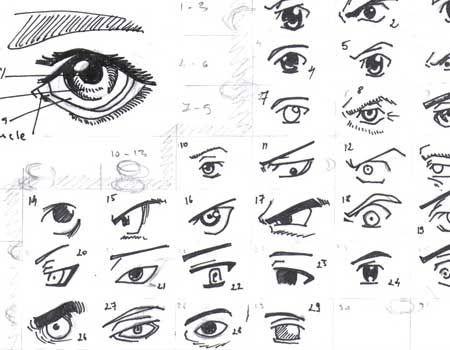 Learn To Draw Eyes Eye Drawing Realistic Eye Drawing Manga Eyes