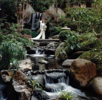 Beautiful Maui Wedding Ideas Pinterest Weddings Waterfall And