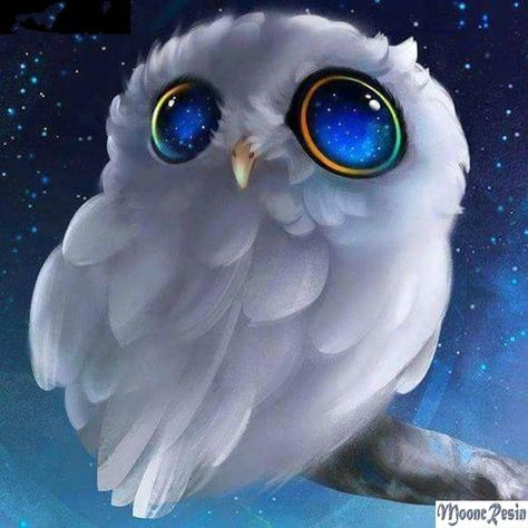 5D DIY Diamond Painting. White Baby Owl Big Blue Eyes.  Square drill, 8 kit sizes to pick from.
