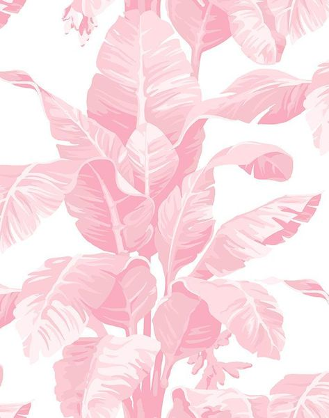 'Pacifico Palm' Wallpaper by Nathan Turner - Garcelle Pink - Removable Panel - Sample