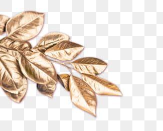 أوراق الشجر الذهبية أوراق ذهبية أوراق ذهبية أوراق الشجر الذهبية Png وملف Psd للتحميل مجانا In 2020 Golden Leaves Leaves