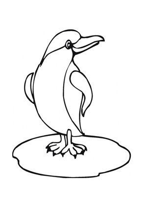 Ausmalbild Junger Pinguin Auf Eisscholle Zum Kostenlosen Ausdrucken Und Ausmalen Fur Kinder Ausmalbilder Malvorlagen In 2020 Ausmalbilder Tiere Ausmalen Pinguine