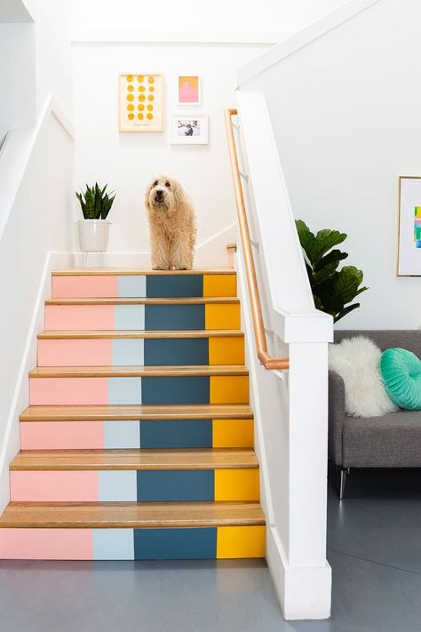 Home Decoration Ideas Interior Design .Home Decoration Ideas Interior Design Deco Pastel, Pastel Blue, Painted Stairs, Painted Staircases, Staircase Painting, Staircase Diy, Painted Floorboards, Entryway Stairs, Painted Floors