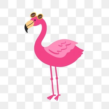 Hand Drawn Cute Pink Flamingo With Sunglasses Flamingo Clipart Cartoon Bird Png Transparent Clipart Image And Psd File For Free Download How To Draw Flamingo Cartoon Clip Art Clip Art