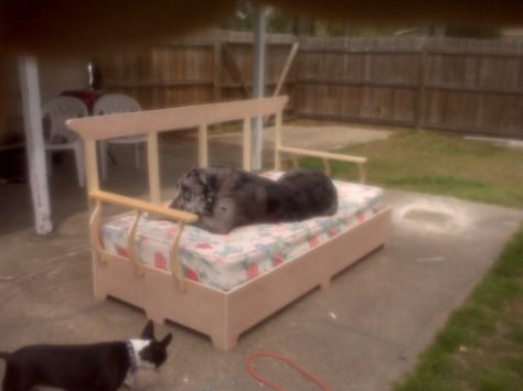 My Son S Great Dane S Bed That He Built Twin Size Bed Great