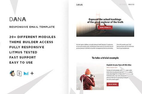 Dana – Responsive Email template