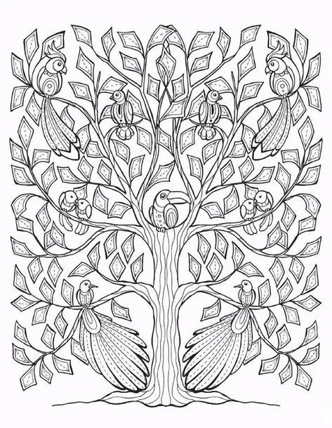 50 Desenhos De Arvores Para Imprimir E Colorir Arvore Desenho