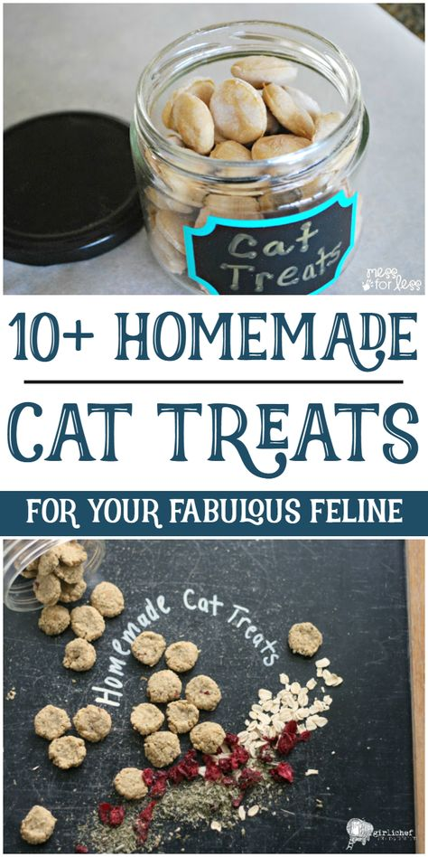 Spoil your fabulous feline with these homemade cat treats.You can find Homemade cat treats and more on our website.Spoil your fabulous feline with these homemade cat treats. Kitten Treats, Pet Treats, Homemade Cat Food, Homemade Breads, Homemade Baby, Healthy Cat Treats, Dog Food Recipes, Recipes Dinner, Healthy Recipes