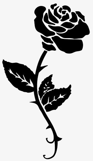 Black And White Pattern Of Roses Black White Roses Png