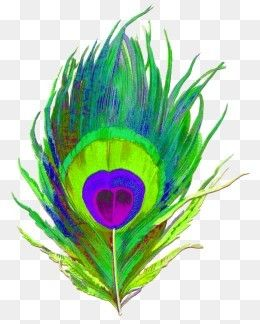 Free Download Peacock Feather Png Image Iccpic Iccpic Com Free Clip Art Clip Art Creative Icon