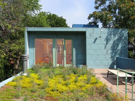 50 Best Green Roof Images Green Roof Roof Living Roofs