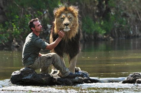 Kevin Richardson - I so envy this guy and his relationships with lions, so amazing!